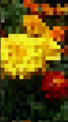 Efecto mosaico poca saturación Xperia.